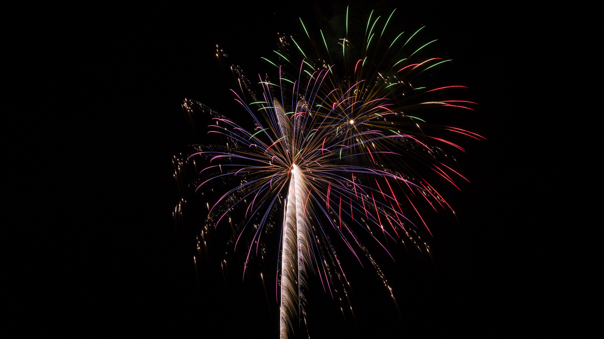 purple and gold and red and green firework