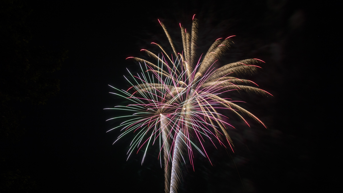 light green and purple and gold fireworks