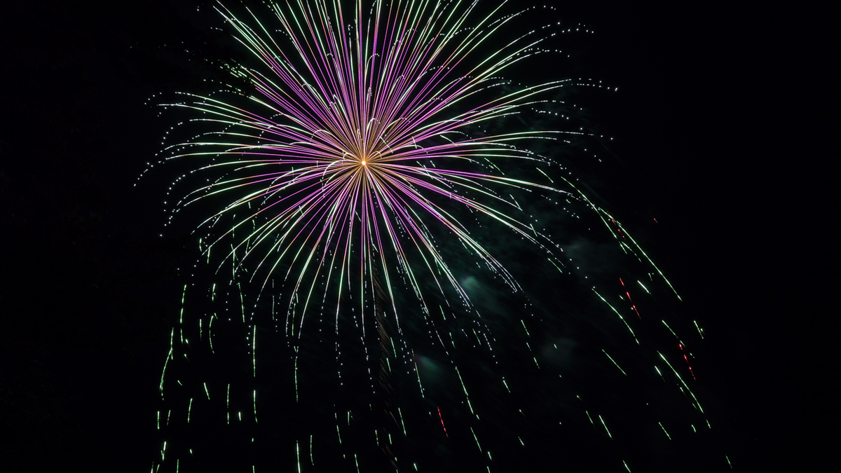 purple and green willow firework